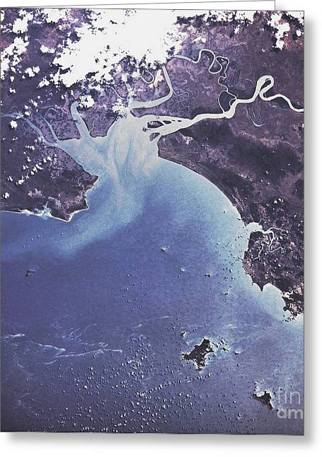 Phytoplankton Or Algal Bloom Greeting Card by Nasa