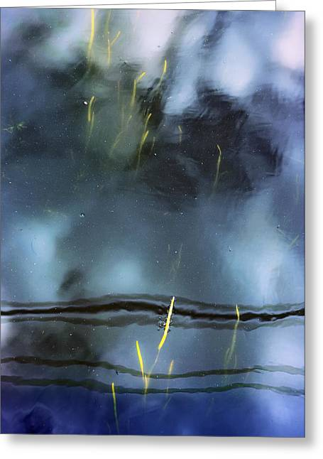 Picture Of Water Greeting Card by Marisa Matis