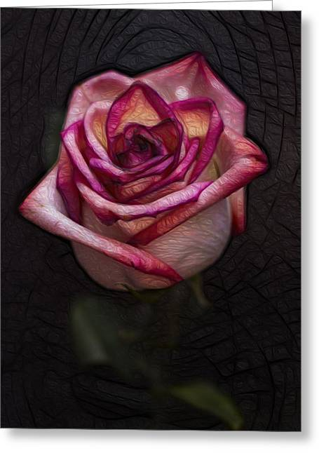 Picturesque Satin Rose Greeting Card by Linda Tiepelman