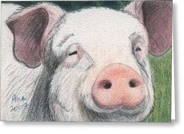 Pig - Aceo Greeting Card