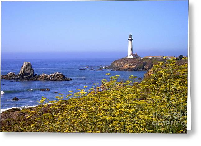 Pigeon Point Lighthouse California Coast Greeting Card by Mike Nellums