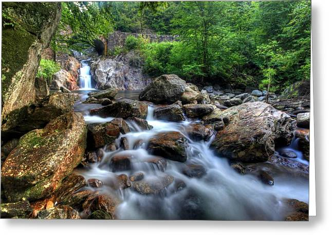 Pigeon River Greeting Card by Doug McPherson