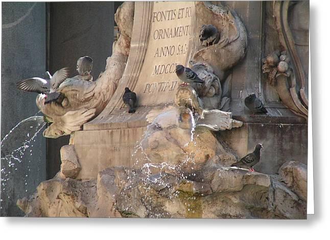 Pigeons Playtime Greeting Card by Valia Bradshaw