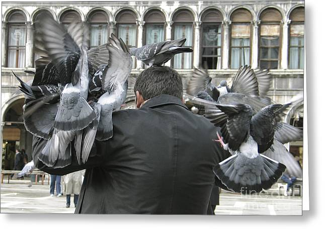 Pigeons. Venice Greeting Card by Bernard Jaubert