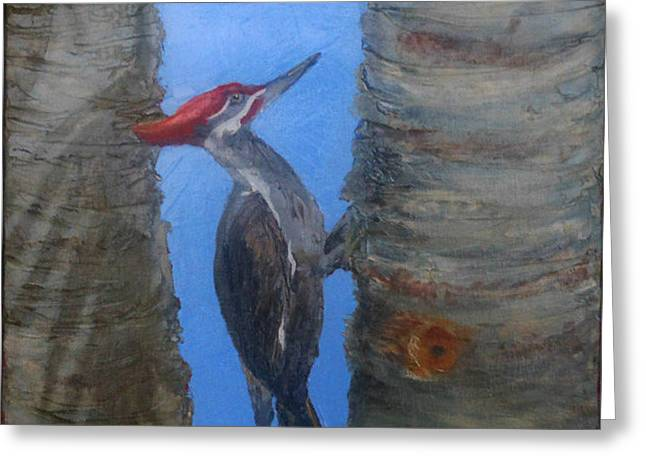 Pileated Woodpecker Greeting Card by Libby  Cagle