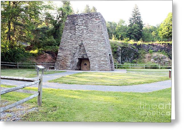 Greeting Card featuring the photograph Pine Grove Furnace State Park by Tony Cooper