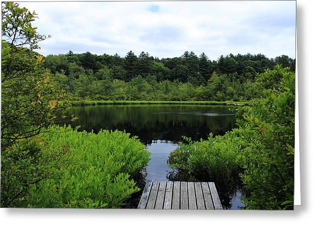 Pine Hole Pond Greeting Card