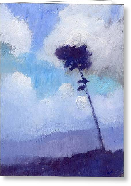 Pine Tree Against The Morning Sky Greeting Card