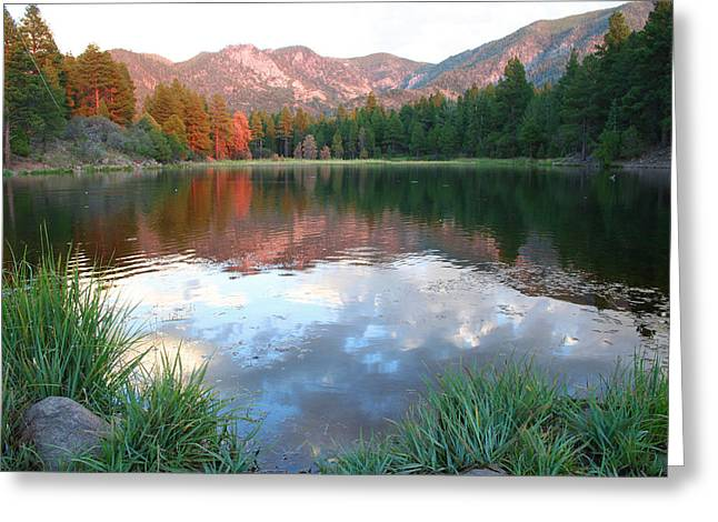 Pine Valley's Tranquility Greeting Card