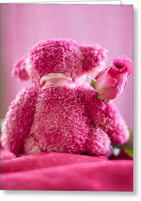 Greeting Card featuring the photograph Pink Bear Behind Holding Pink Rose by Ethiriel  Photography