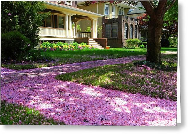 Pink Carpet Greeting Card