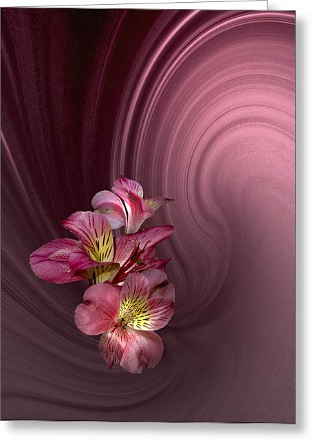 Greeting Card featuring the photograph Pink Fantasy by Judy  Johnson