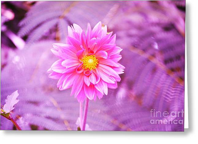 Pink Flower For Breast Cancer Awareness Month Greeting Card by Artie Wallace