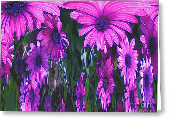 Pink Flower Power Greeting Card