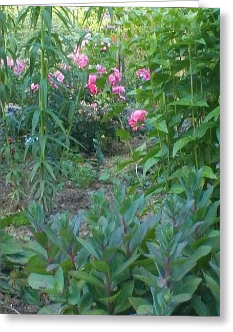 Pink Garden Flowers Greeting Card by Thelma Harcum