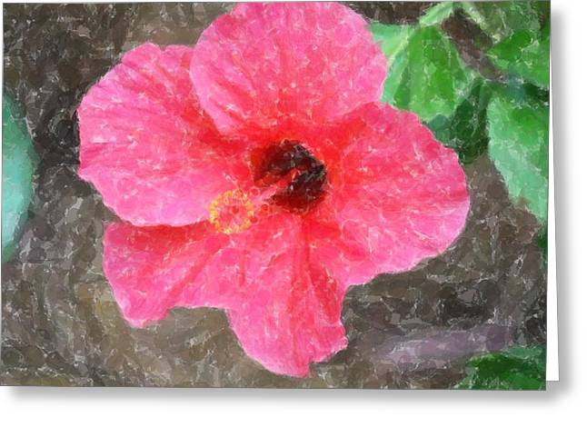 Greeting Card featuring the photograph Pink Hibiscus by Donna  Smith