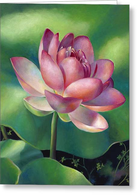 Pink Lotus Water Lily Greeting Card by Nancy Tilles