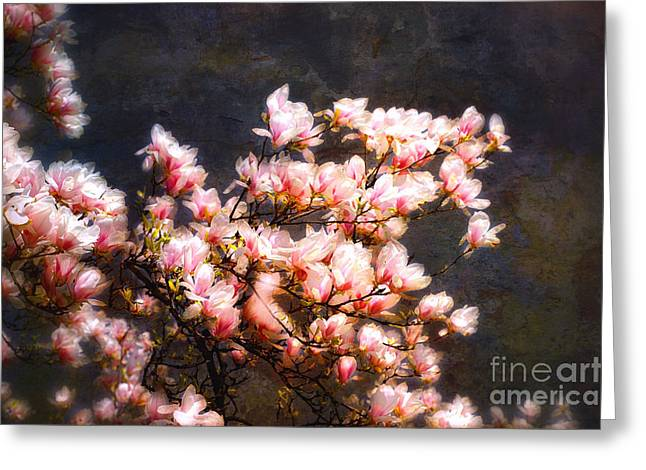 Pink Magnolias Greeting Card by Elaine Manley