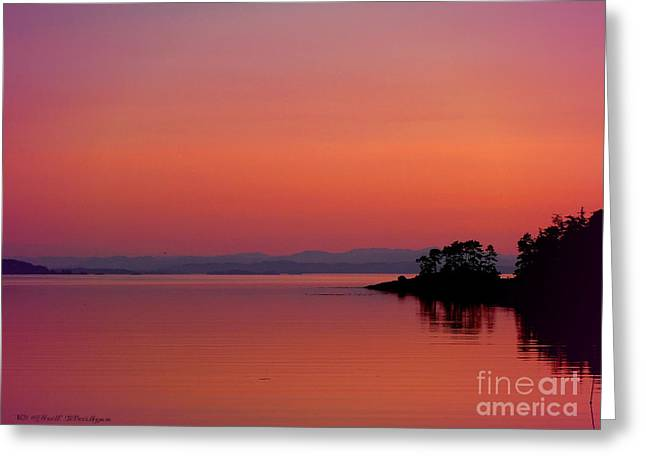 Pink Morn At Rock Point Greeting Card by Gail Bridger
