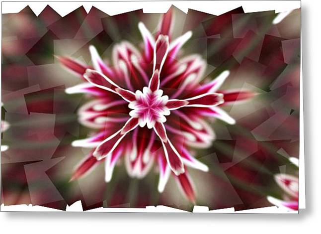 Pink Snowflake  Greeting Card by Cathie Tyler
