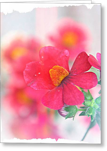 Pink Greeting Card by Susie DeZarn