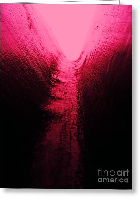 pink Valley Greeting Card by Trevor Fellows