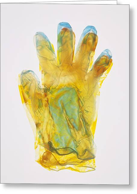 Plastic Glove Greeting Card by Kevin Curtis