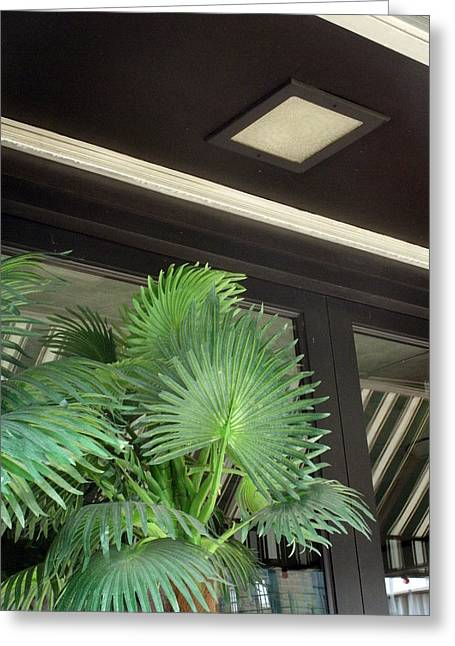 Greeting Card featuring the photograph Plastic Palms And Striped Awnings by Louis Nugent