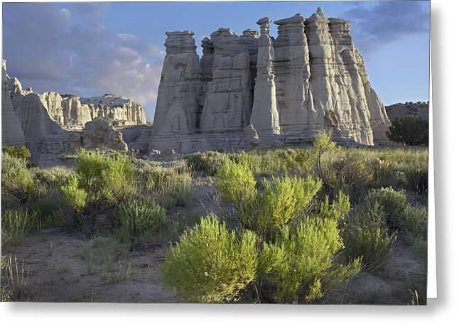 Plaza Blanca Near Abiquiu New Mexico Greeting Card by Tim Fitzharris