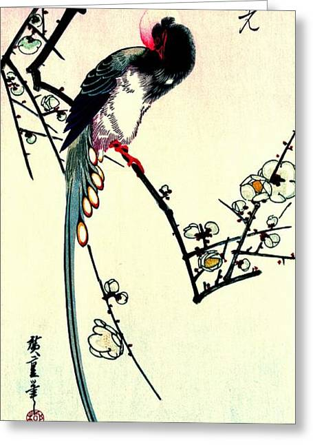 Plum Blossoms And Long-tailed Magpie 1844 Greeting Card