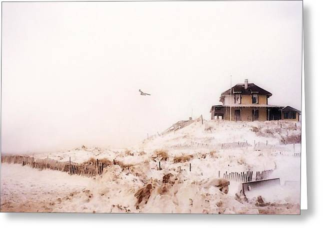 Greeting Card featuring the photograph Plum Island Winter by Karen Lynch