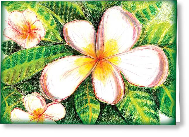 Plumeria With Foliage Greeting Card