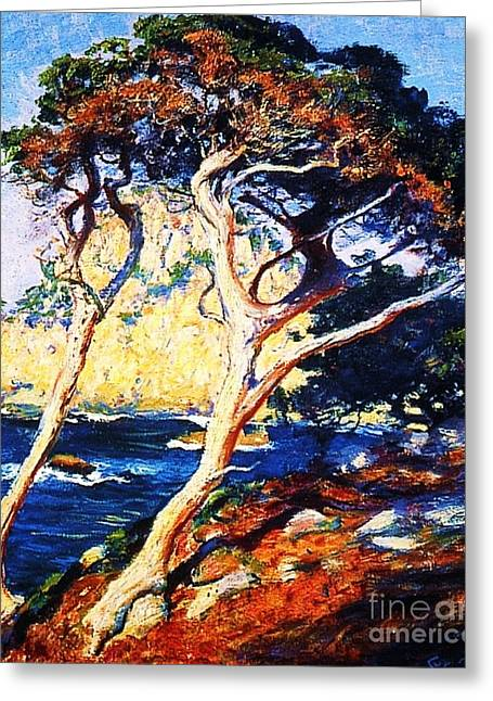 Point Lobos Trees Greeting Card