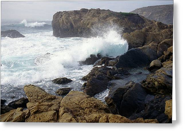 Point Lobos Whale Rock Greeting Card