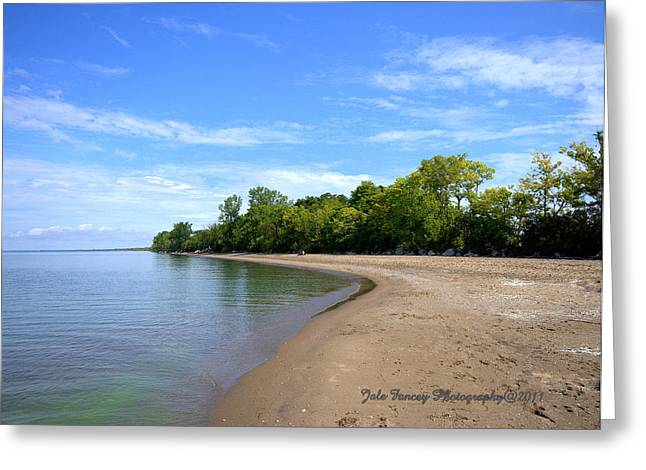 Point Pelee Beach Greeting Card