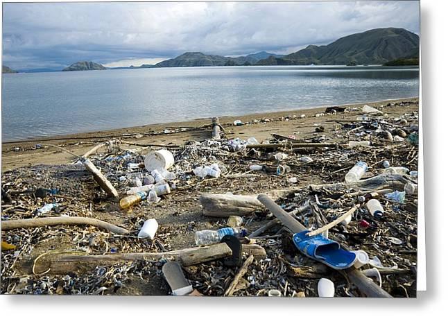 Polluted Beach, Komodo Island, Indonesia Greeting Card by Georgette Douwma