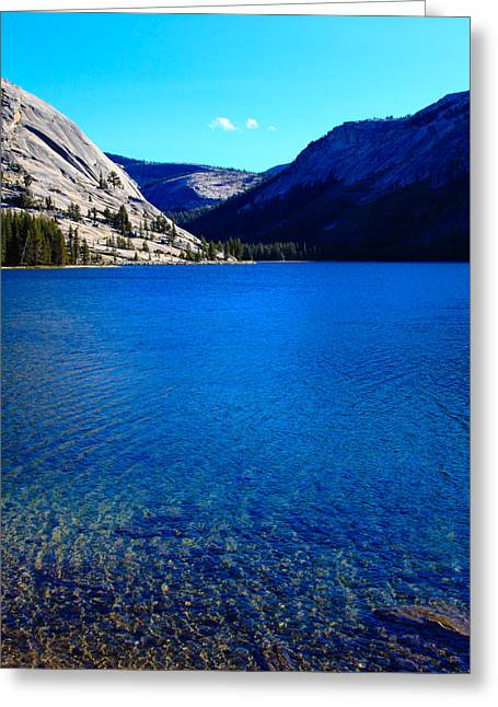Polly Dome And Tenaya Lake Ca Greeting Card by Troy Montemayor
