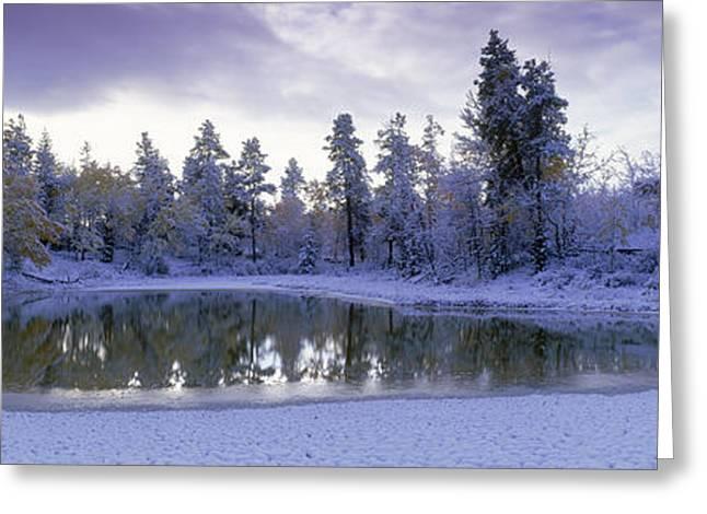 Pond And Fresh Snowfall, Near 70 Mile Greeting Card by David Nunuk