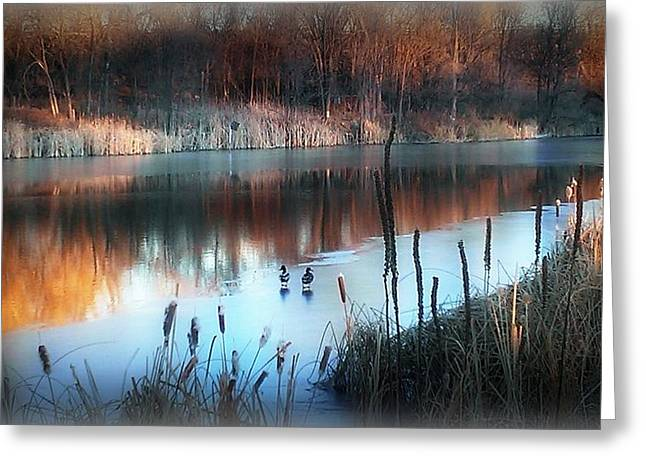 Greeting Card featuring the photograph Pond Creek by Michelle Frizzell-Thompson