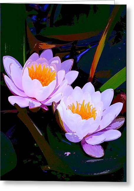 Pond Lily 16 Greeting Card by Pamela Cooper