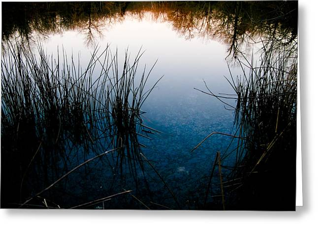 Pond Reflections Greeting Card by Susan Adams