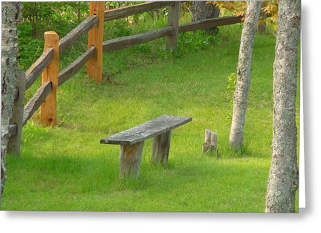 Pondering Bench Greeting Card by Michael Carrothers