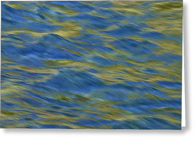 Greeting Card featuring the photograph Ponderosa Abstract 2   by Sherri Meyer