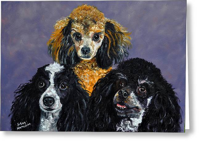 Poodles Greeting Card by Stan Hamilton