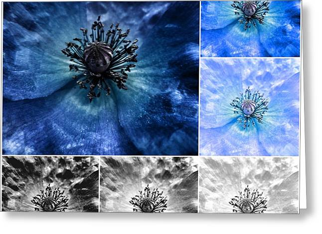 Poppy Blue - Macro Flowers Fine Art Photography Greeting Card
