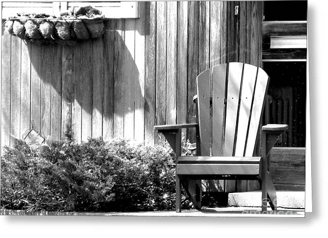 Porch Buddies Greeting Card by Michael Swanson