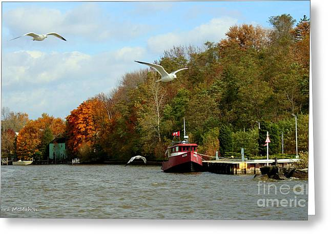 Greeting Card featuring the photograph Port Dover Harbour by Barbara McMahon