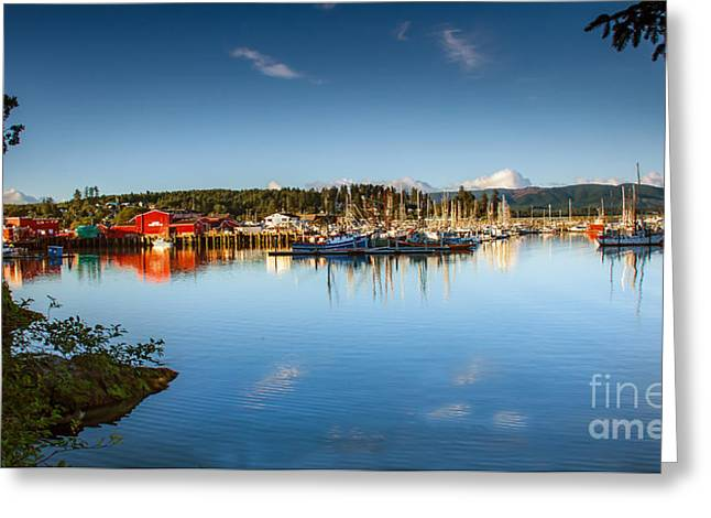 Port Of Ilwaco Greeting Card by Robert Bales