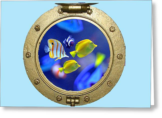 Porthole Of Fish Greeting Card