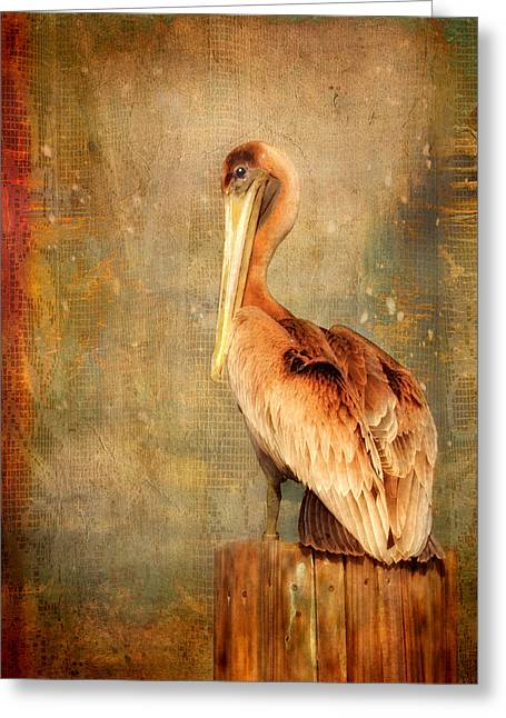Greeting Card featuring the photograph Portrait Of A Pelican by Karen Lynch